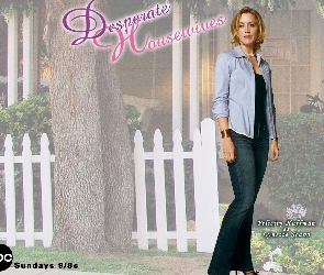 Desperate Housewives, drzewo, Felicity Huffman