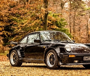 Czarne, 930 Limited Edition, Porsche 911 turbo