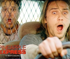 Pineapple Express, Komedia