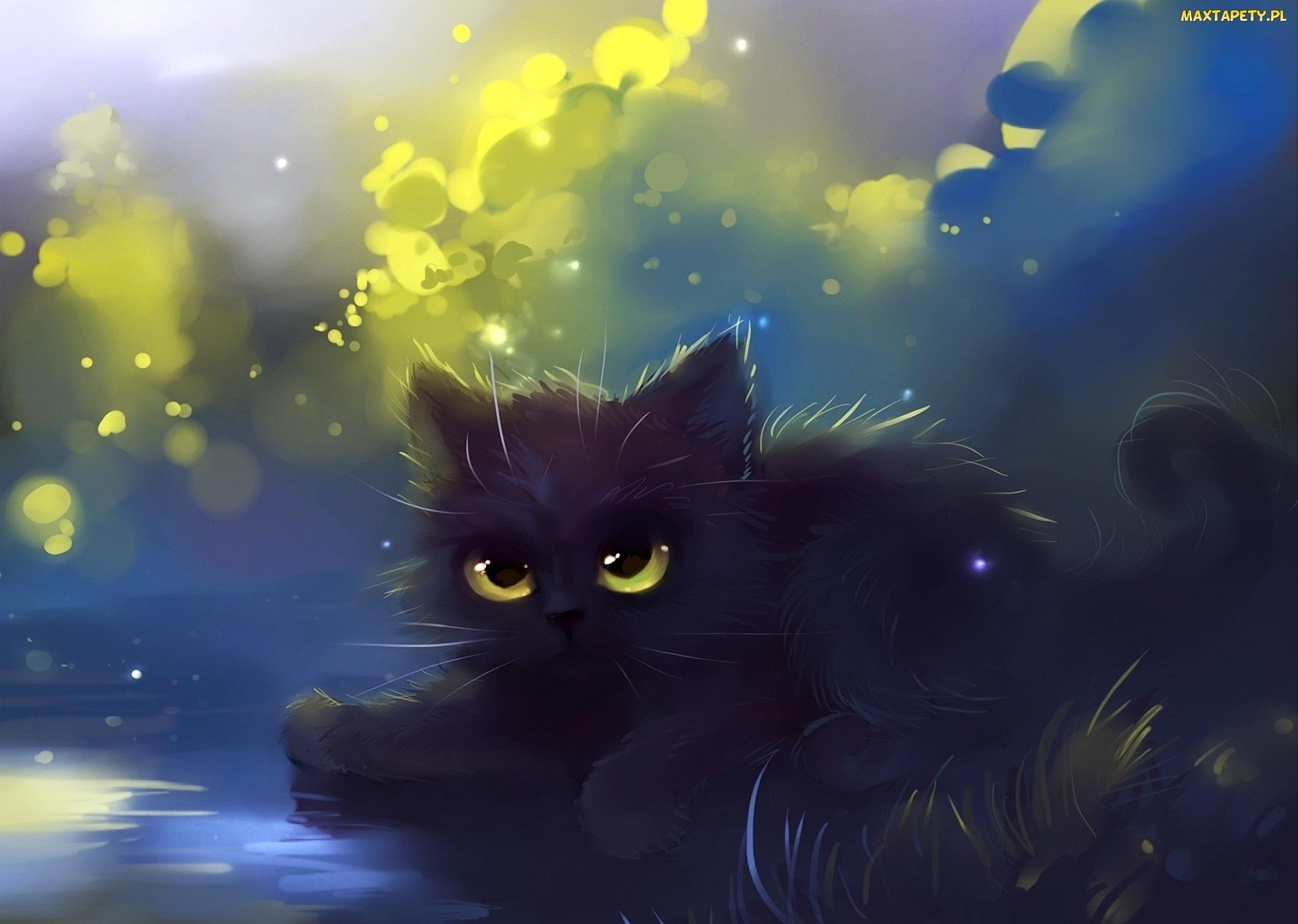 Tapety Zdjęcia Fantasy Kot